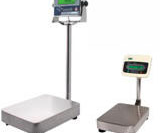 Platform And Bench Scales